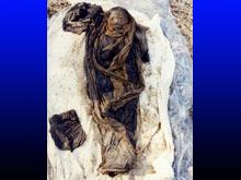 Корейская мумия рассказала генетикам о древнем гепатите