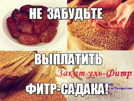 TM8o_u5tee0